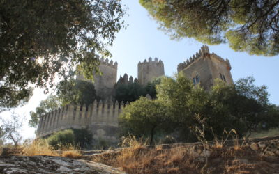 Summer in Andalucia Photo Gallery – Lucy Coleman